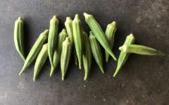 Misunderstood Vegetables: Summer